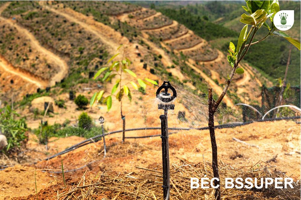 Béc BSSUPER tưới đồi dốc