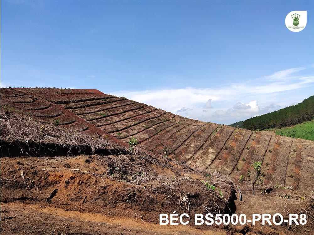 Đồi macca 8Ha tại Lâm Hà, Lâm Đồng với hệ thống tưới phun mưa tự động.